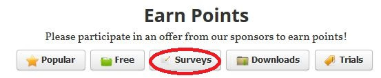 Sponsor #2 Surveys